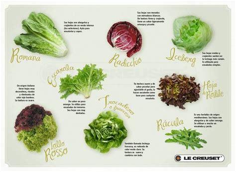 imagenes de hojas verdes comestibles hortalizas de hoja josselyns food