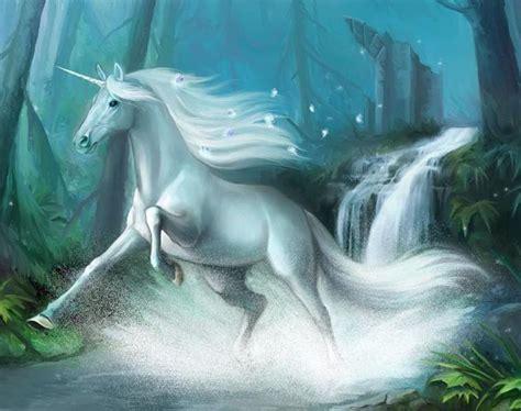 imagenes de unicornios y hadas reales foto de unicornio al trote imagen de unicornio al trote
