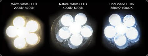 China Led Car Led Led Light Supplier Dongguan Jihai Difference Between Cool White And Warm White Led Lights