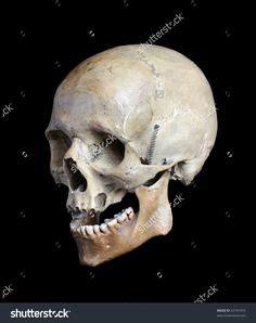 Deko Tipps 5802 by Skull Ref Skulls Sch 228 Fotobearbeitung