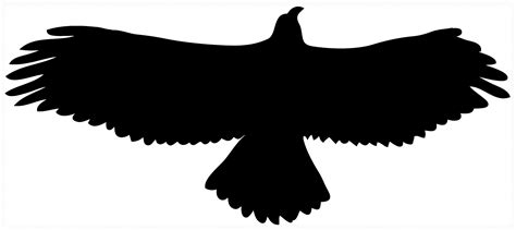 Black Hawk Outline by Flying Hawk Clipart Cliparts Co