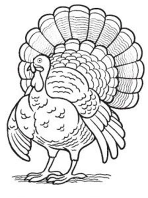 turkey time coloring page turkey coloring page