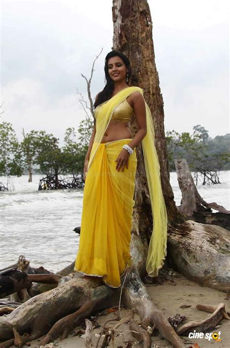 low hip saree draping low hip saree draping gujarati style saree draping hot