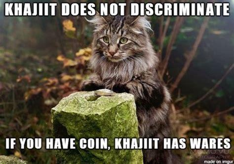 Khajiit Meme - 24 best skyrim memes funny skyrim memes of all time