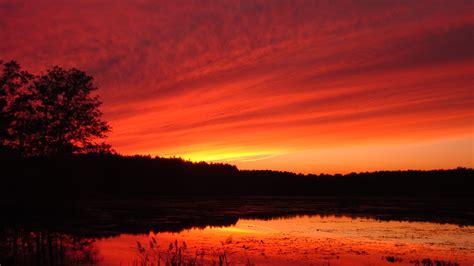 Sun Set sunset wildlife photos delaney wma