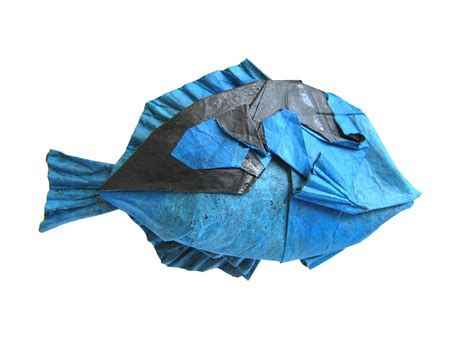 Origami Shark Diagram - 25 excellent origami fish just for the halibut