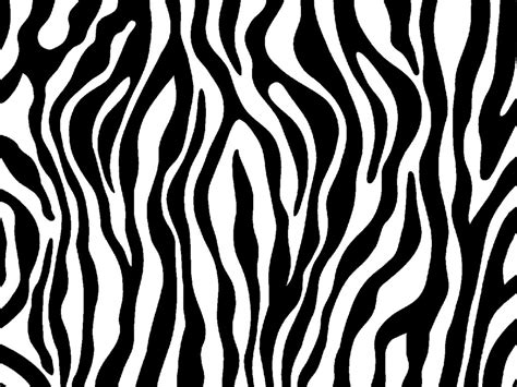 zebra print designs zebra print photo zebraprint jpg animal coloring