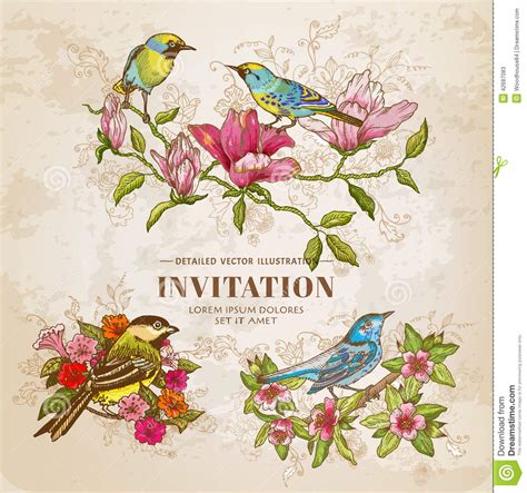 490132 green book sur les ensemble de fleurs et d oiseaux de vintage illustration de