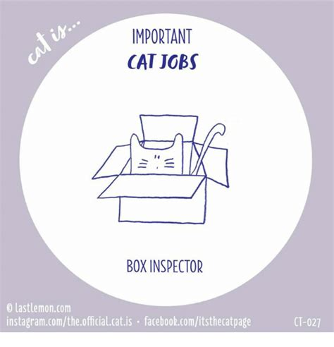 box inspector and other important for cats books important cat box inspector 0 lastlemoncom