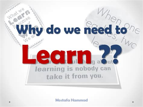 why we do what we do understanding our brain to get the best out of ourselves and others books why do we learn