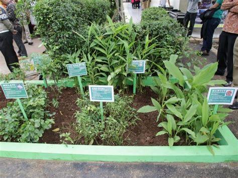taman tanaman obat keluarga toga basuki resmikan rptra