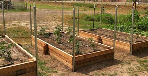 elevated garden beds diy