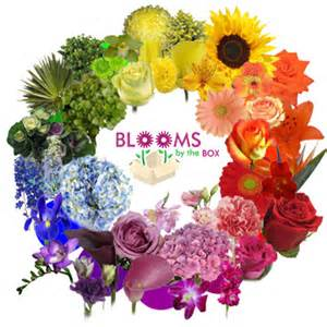 flowers by color designing fresh flower arrangements working the flower