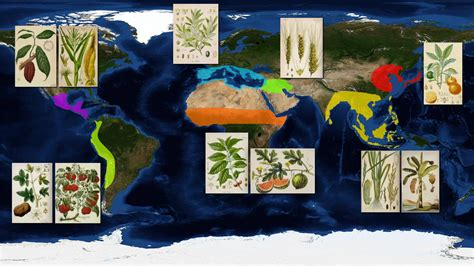 origins food history of world food explained with maps