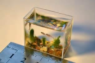 Eiffel Tower Desk World S Smallest Aquarium With Fish Epidemicfun Com