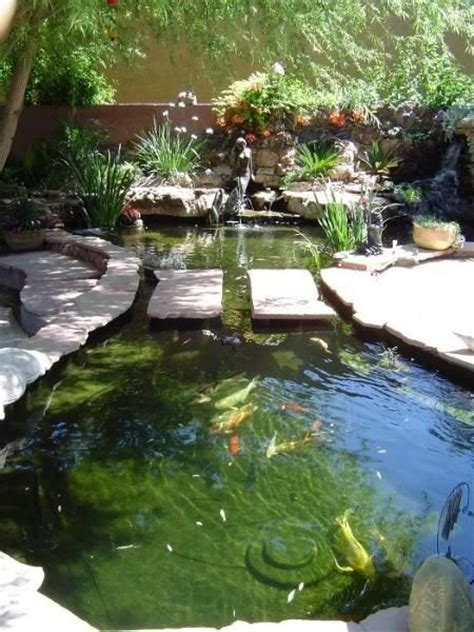 beautiful backyard koi pond books worth reading