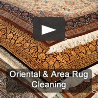 rug cleaning nashville pro care of nashville carpet cleaning and upholstery cleaning 615 221 4100