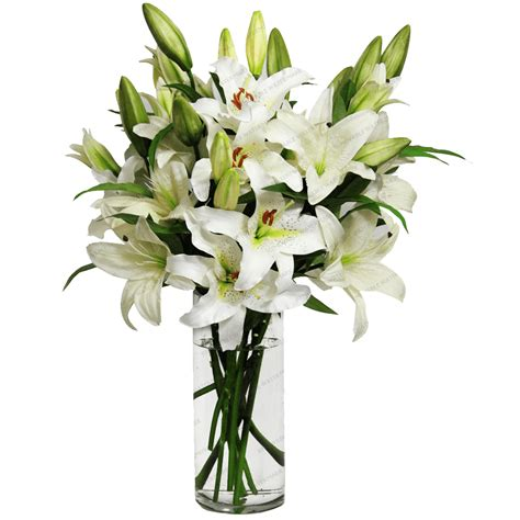 flowers in vase lilies in a vase transparent png stickpng
