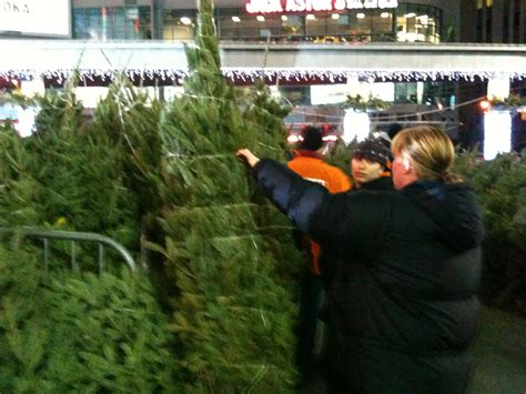 1 000 christmas trees sold in charity sale 680 news