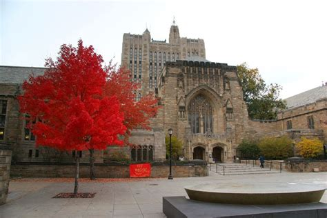 Yale School Of Management Mba Ranking by Yale School Of Management Programs And Admissions