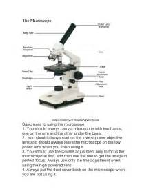 pictures microscope labeling worksheet getadating