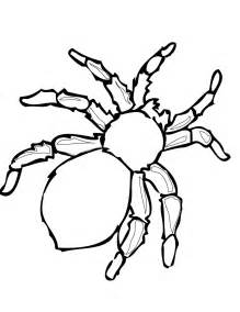 free printable spider coloring pages kids