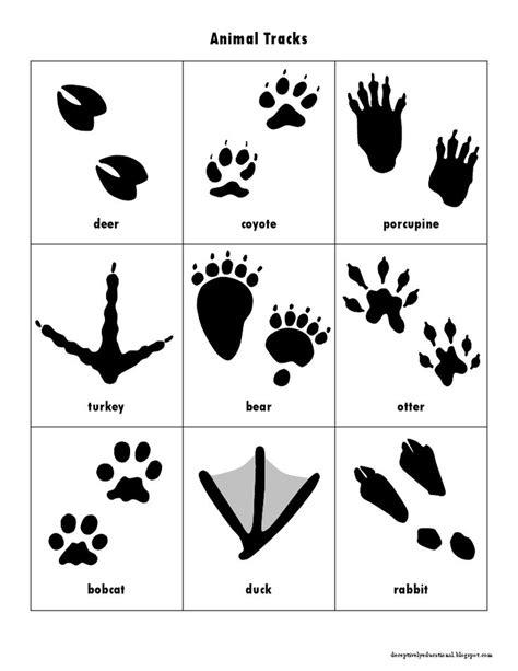 printable animal track cards animal track cards pdf for the kids pinterest