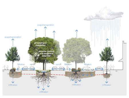 design guidelines for stormwater quality improvement devices stormwater quality regulations rich design studios