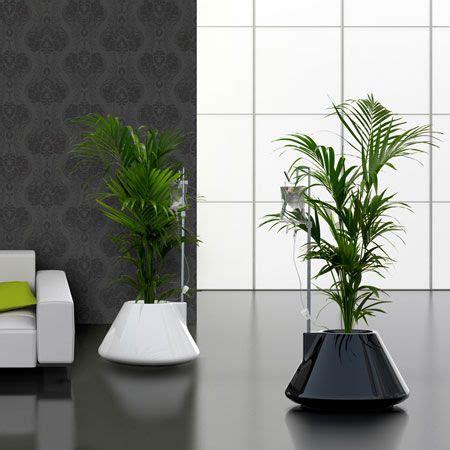 macetas para interiores macetas para el interior de tu casa o apartamento
