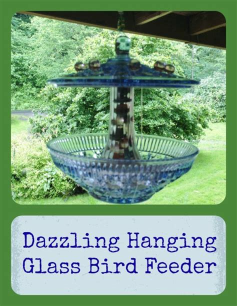 hometalk dazzling hanging glass bird feeder