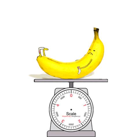 Banana For Scale Meme - banana scale gif find share on giphy