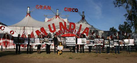 entradas de circo valencia animanaturalis protest 243 frente al circo mundial en