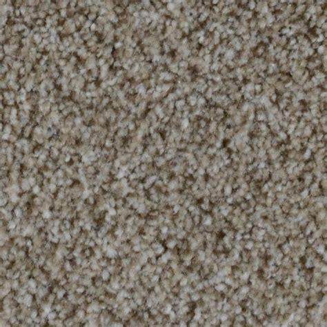 home decorators carpet home decorators collection carpet sle appalachi i s