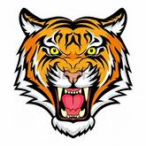 Tiger Eyes Vector | Clipart Panda - Free Clipart Images
