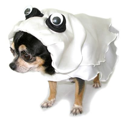 ghost costume for dogs ghost costume ghost costume for dogs ghost costumes