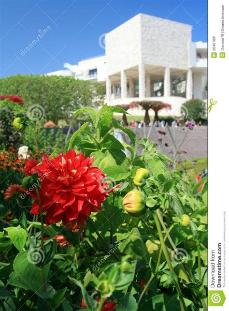 Flower Garden Los Angeles Flower Garden Los Angeles Flower White Getty Stock Image Image 30467031 Los Angeles Catering