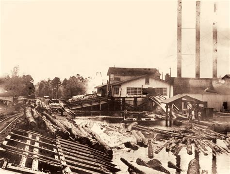 Pictures Of Mills Found At Dump Returned To Sir Paul Article Is Just Without Jpegleg by Preserving Louisiana S Southern Forest Heritage