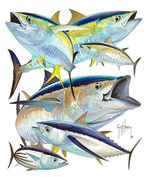 yellowfin boat drawing yellowfin tuna aquatic inspirations pinterest