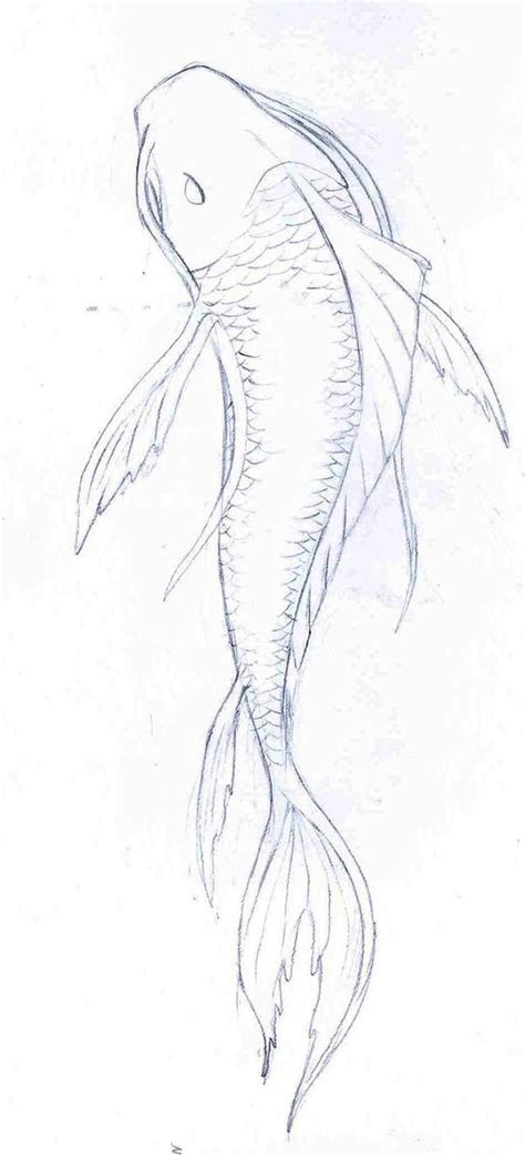 koi pond thediabeticspoon drawing realistic and stylish koi fish drawings in pencil google search art