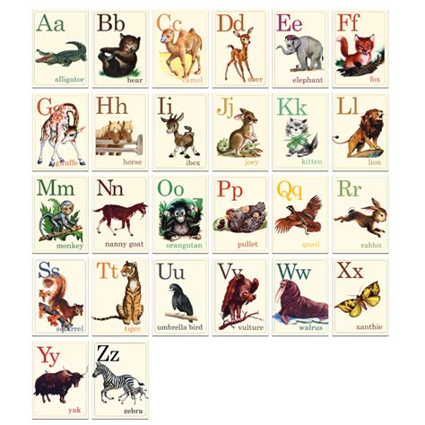 printable alphabet flash cards with animals mammals wild animal best blog wild animals printable