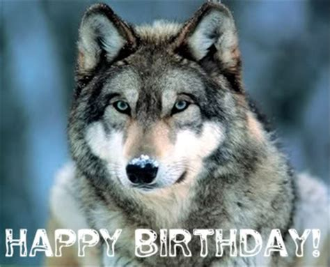 printable wolf birthday cards happy birthday wolfdio jan 20 2015 page 2