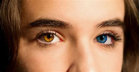 imagenes ojos cafes 191 ojos caf 233 s o azules estudio revela cu 225 les son m 225 s