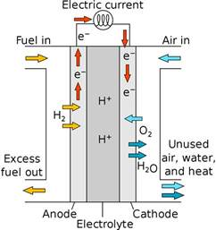 Proton Fuel Cell File Proton Exchange Fuel Cell Diagram Svg