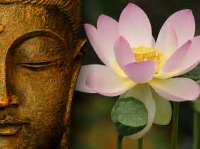 Buddha With Lotus Flower Buddha Wallpapers Sathya Sai Baba