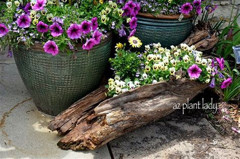 Diy Log Planter by Wonderful Diy Log Planter