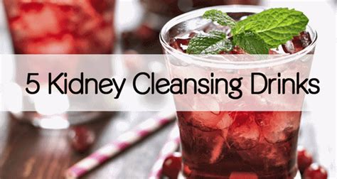 Best Detox Drink For Kidneys by 5 Kidney Cleansing Drinks Healthy Food Advice