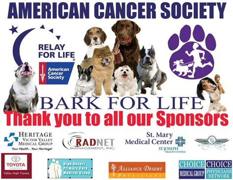 by walking and fundraising in the american cancer society making 19 best relay bark for life ideas images on pinterest