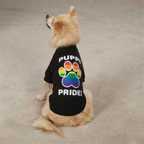 puppy pride puppy pride rainbow paw shirt canine pride pup xxs xs s m l xl ebay