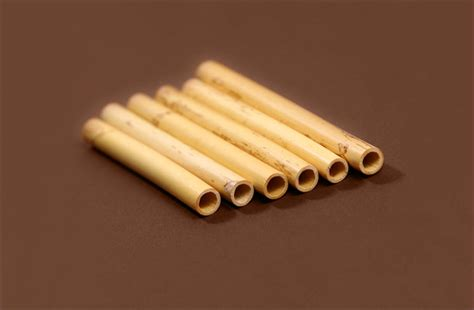 Kerang Bambu Per Kilo tubi bamb 249 corno inglese danzi reeds regione var