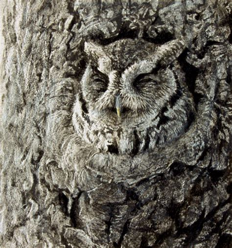 owl tree robert bateman paintings